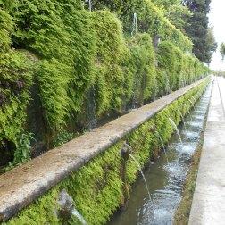 Enfin, voici un côté de la grande allée, bordée de fontaines, d'où son nom, l'allée des 100 fontaines.